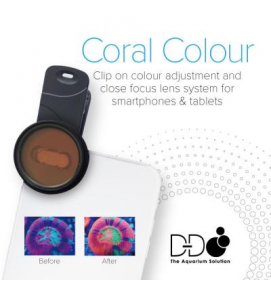 coral colour lens_D-D