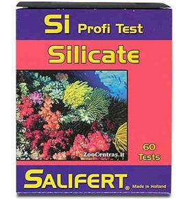 silicato