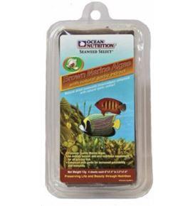 ocean-nutrition-brown-marine-algae-alga-marron-marina-8-gr