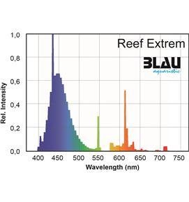 reef-extreme-blau