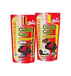 cichlid_gold