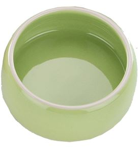 comedero verde 12